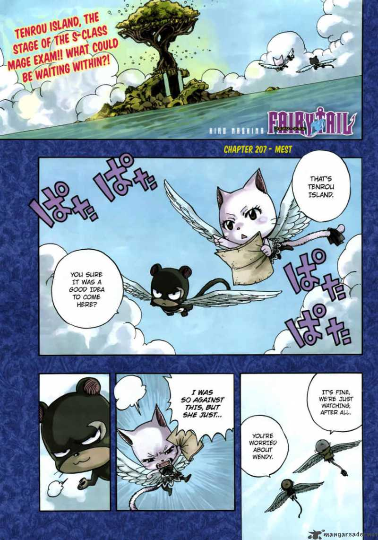 Fairy Tail 207